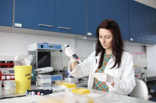 SIC pomáhá středočeským výzkumným organizacím ainovačním firmám shledáním nových zaměstnanců